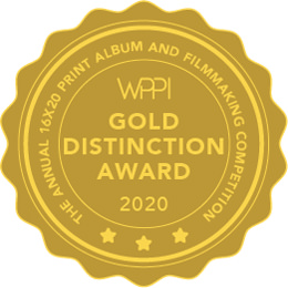 best wedding videographer gold distinction award wppi